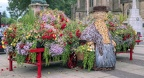 Bury in Bloom 2016 (1)